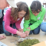 Kids examining sample
