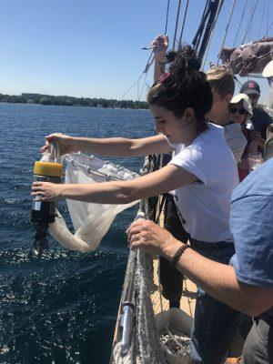 girl pulling sample net from water