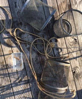 minnow traps and container