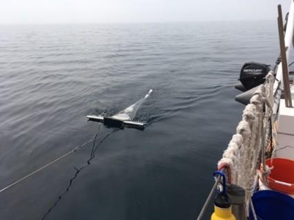 manta trawl for microplastics